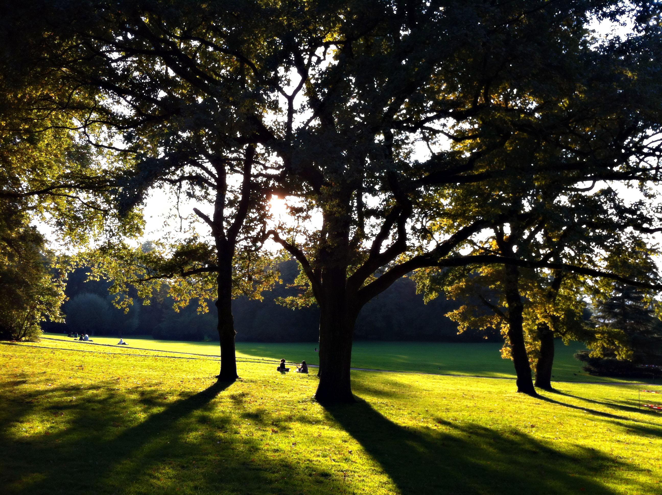 Женева парк